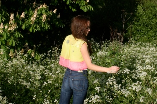 SariCycle Pink/Yellow Crop Top, embroidered silk chiffon. Model: Julia Rose Brownlee