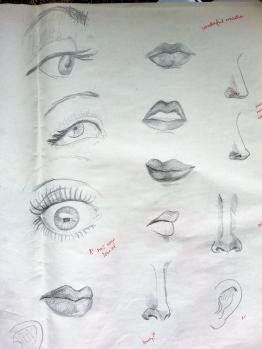 Eyes, Lips, Noses
